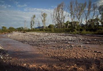 Hallan contaminantes que causan cáncer en el Río Sonora