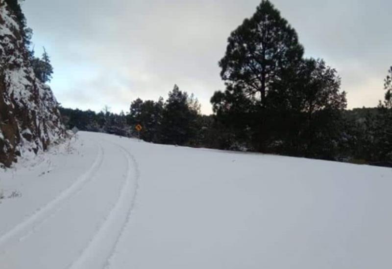 Chihuahua en alerta amarilla; así se ven las nevadas que azotan la entidad