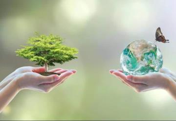 Proponen reformas a diversas leyes en pro del medio ambiente en Tabasco
