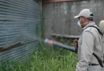 Vendrá a Tabasco refuerzo contra dengue desde CDMX