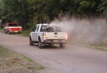 Emprenden acciones para combatir el dengue en  Tabasco