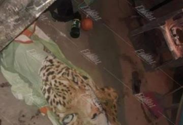 Asesinan a un niño de 5 años y a su madre embarazada en Cunduacán