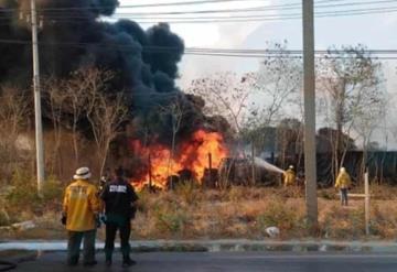 Más de 1,550 hectáreas son afectadas por cinco incendios activos en Yucatán