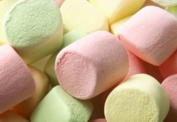 ¿Sabes de qué están hechos los bombones?
