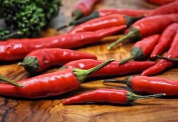 Estudio revela que el chile es antioxidante y anticancerígeno