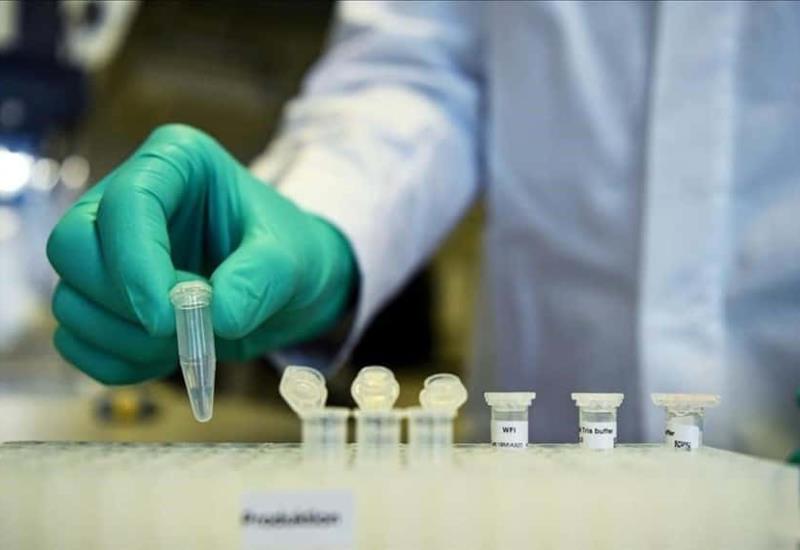Expertos de la OMS viajarán a Wuhan para buscar el origen del coronavirus