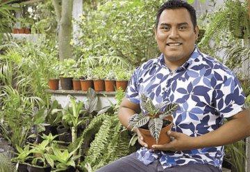 Proyecto Popal Tropical: Diseño y respeto por la naturaleza