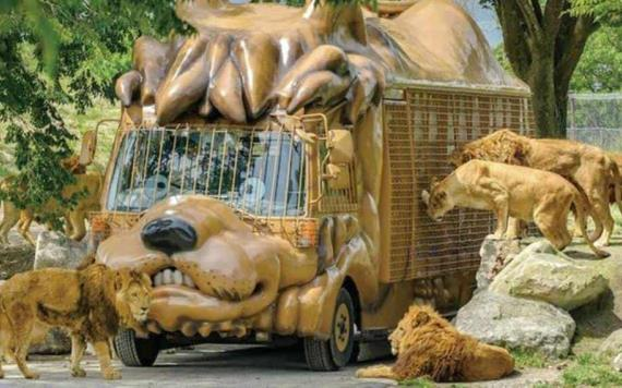Reemplazan erizo por un cepillo en zoológico japonés