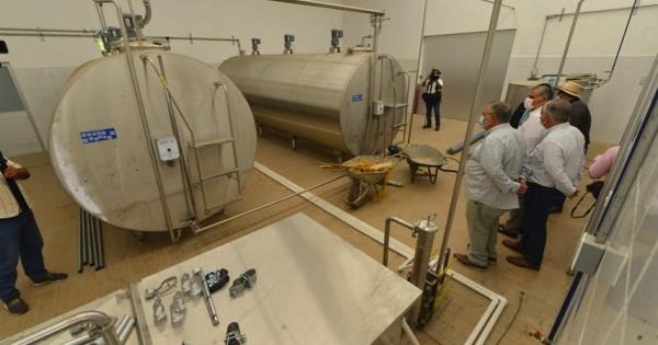 Reactivarán el sector lechero con Centros de Acopio